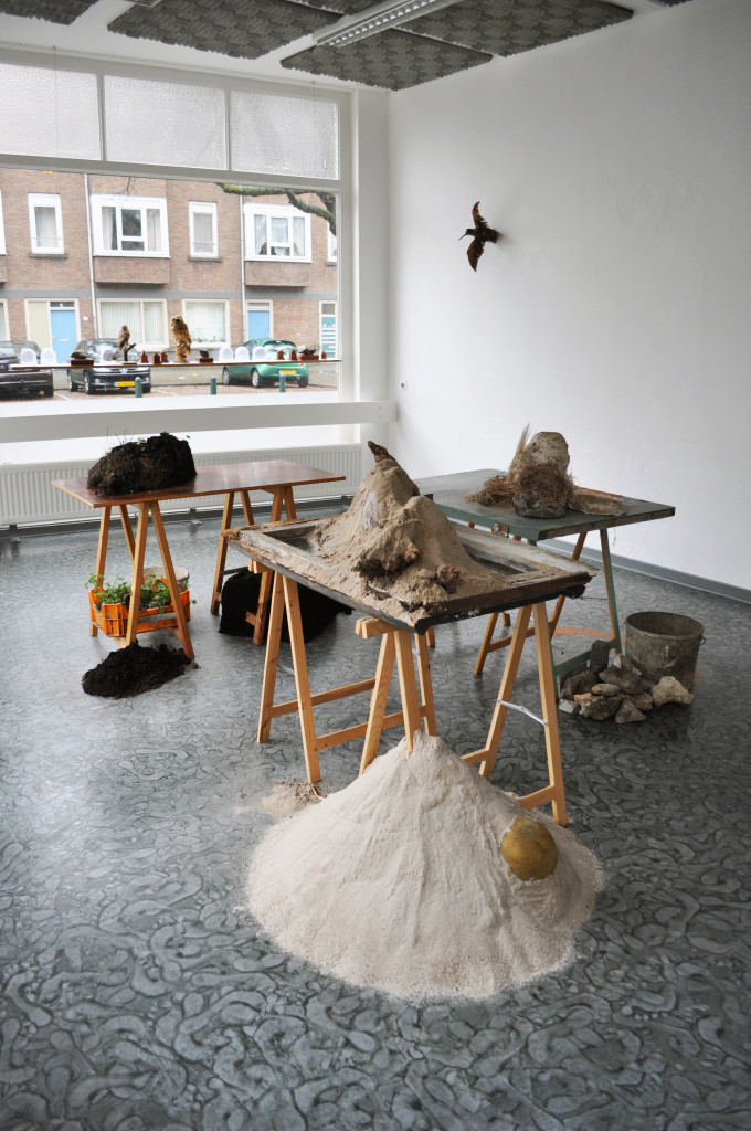 overview2_the_research_centre_for_practicing_nature_sanne_van_gent